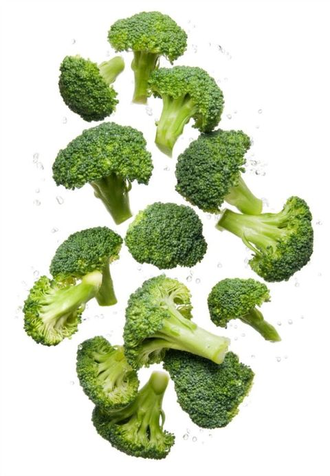 Healthy eating clean organic fresh vegetable Broccoli flying and bouncing up into the air in studio on a white background for wellness