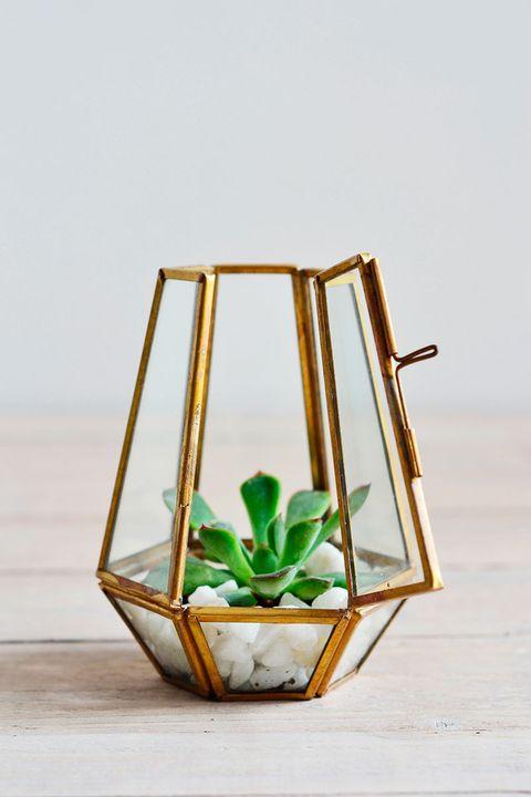 Still life photography, Flowerpot, Plant stem, Creative arts, Pottery,