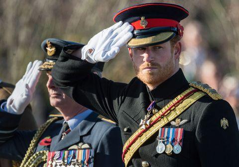 Prince Harry Armistice Day