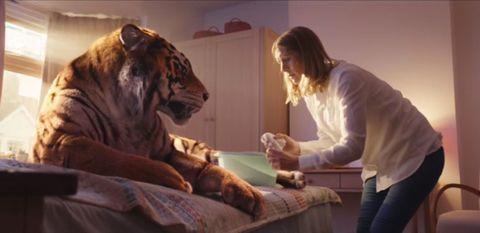 WWF Christmas ad