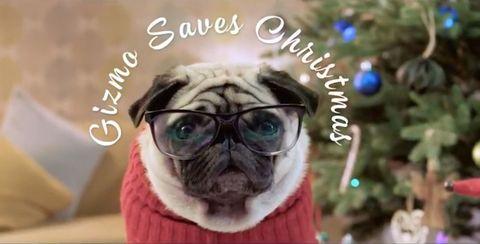 Gizmo saves Christmas