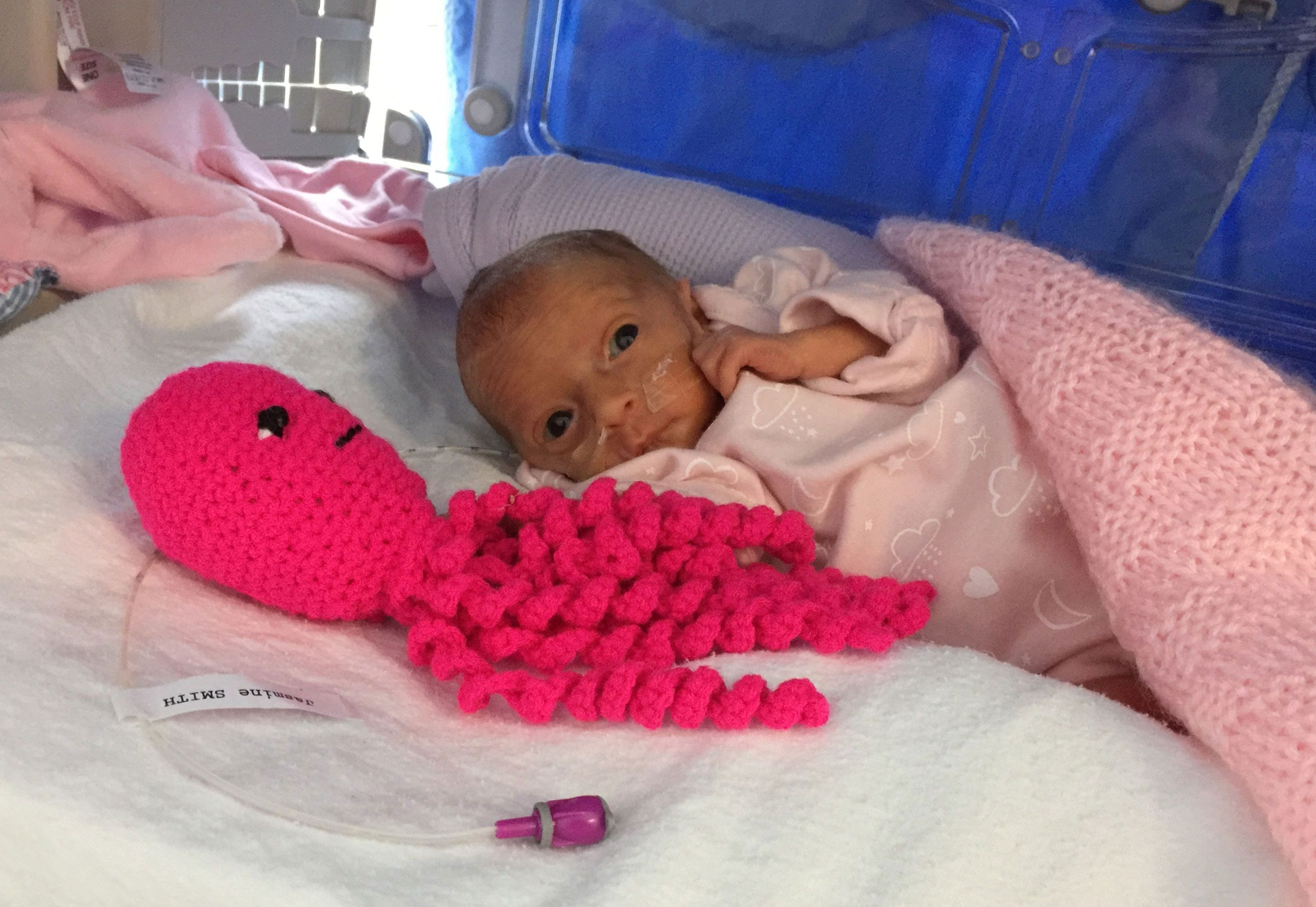 How crocheted octopuses are helping premature babies