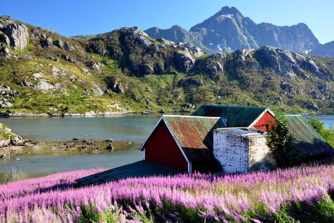 Mountainous landforms, Mountain range, Natural landscape, Lavender, Highland, Landscape, Mountain, Purple, House, Lavender,