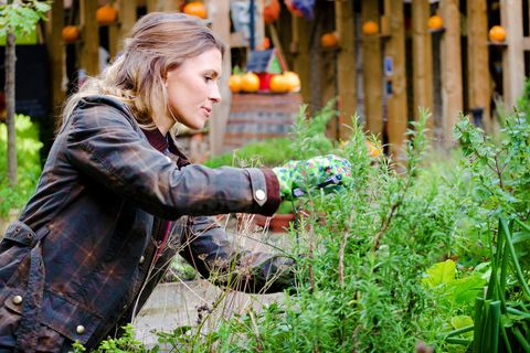 Why gardening therapy is being prescribed by doctors