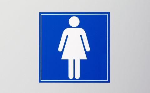 Ladies toilet sign