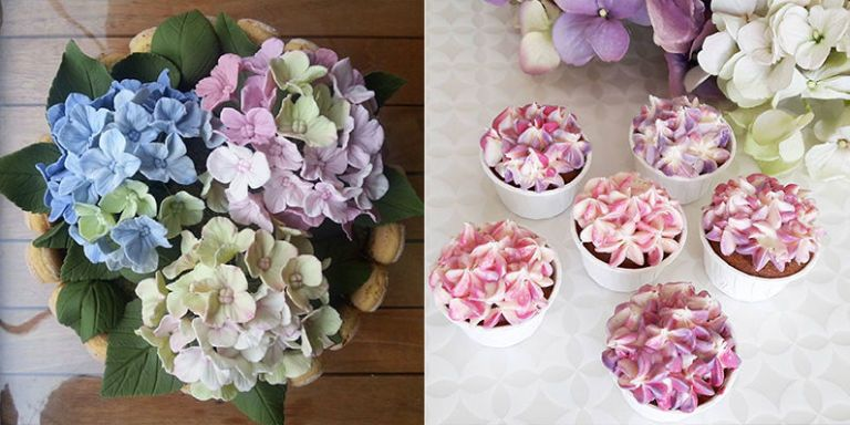 People are obsessed with hydrangea cakes and cupcakes right now