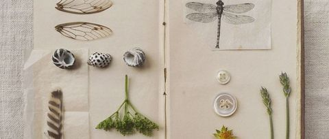 Easy tips to get you started with scrapbooking