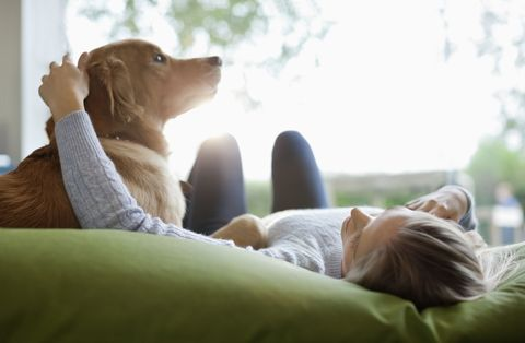 Your genes may determine whether you are an animal lover or not