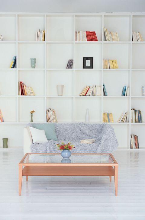 Shelves, Sofa and Coffee Table