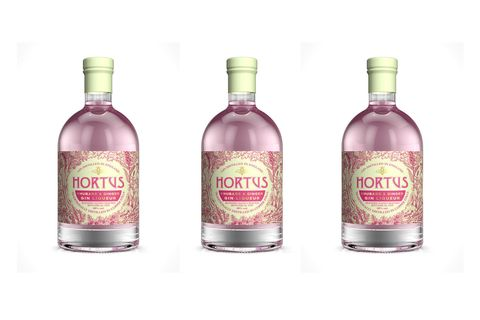 Lidl Is Now Selling Rhubarb And Ginger Gin For Under 12
