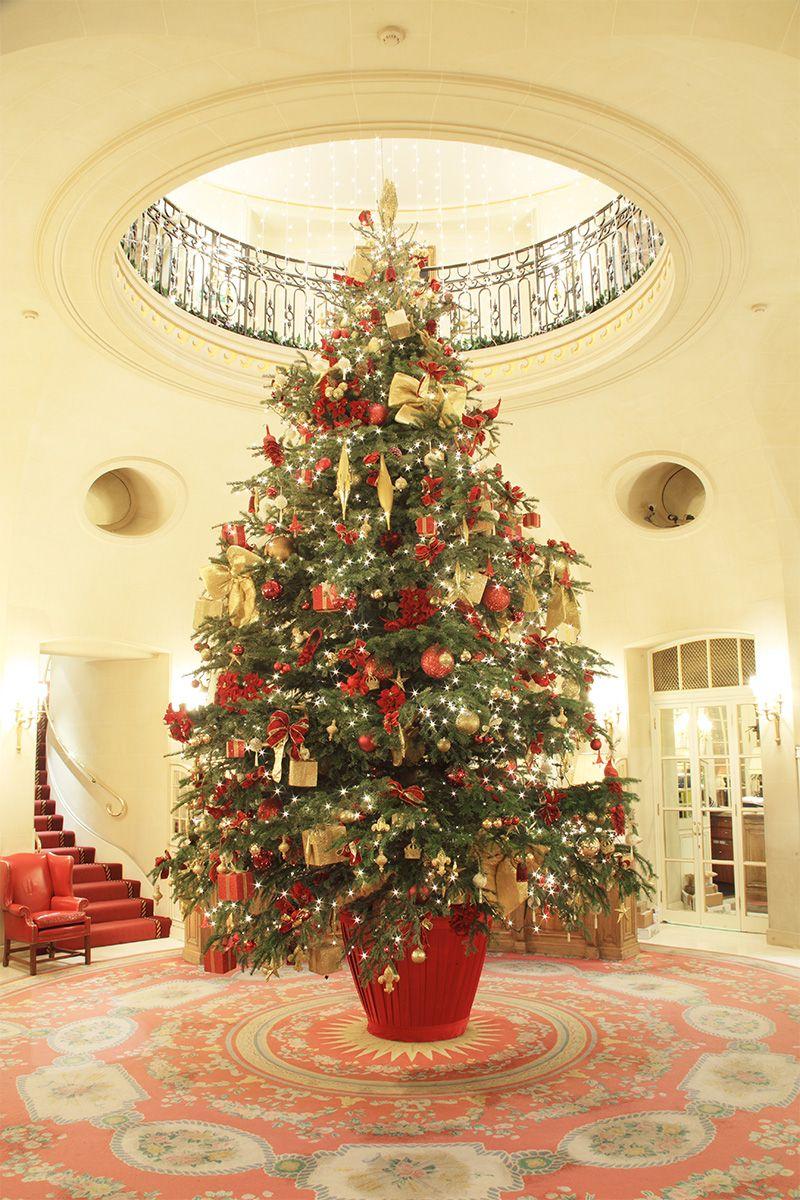 Hotel Christmas trees