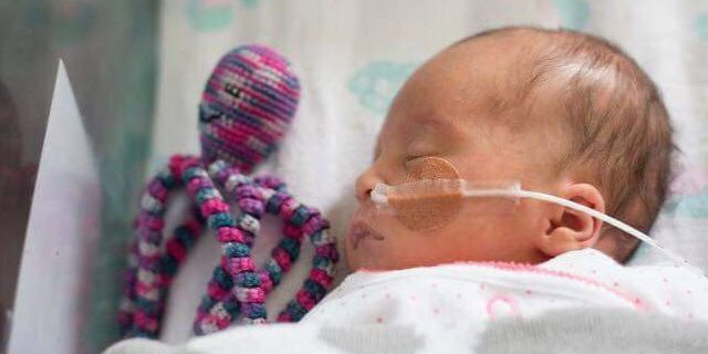 Octopus For A Preemie Charity Crochets Octopuses For