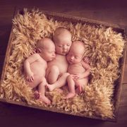 Brown, Tan, Peach, Baby, Still life photography, Cardboard, Natural material, Toy,