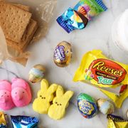 8 EASTER CANDY S'MORES IDEAS