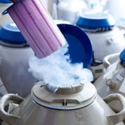 The Truth About Egg Freezing