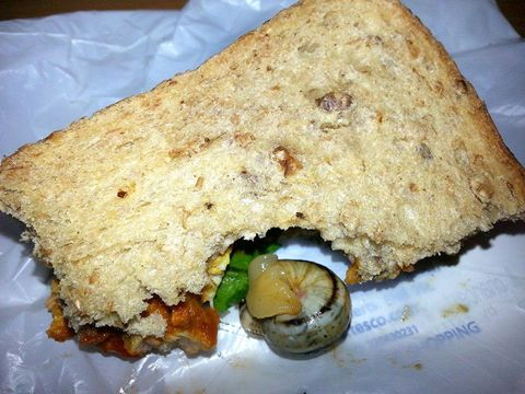 Woman Finds Live Snail In Her Chicken Tikka Sandwich