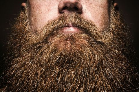 Facial hair, Lip, Hairstyle, Chin, Eyebrow, Moustache, Beard, Jaw, Close-up, Throat,
