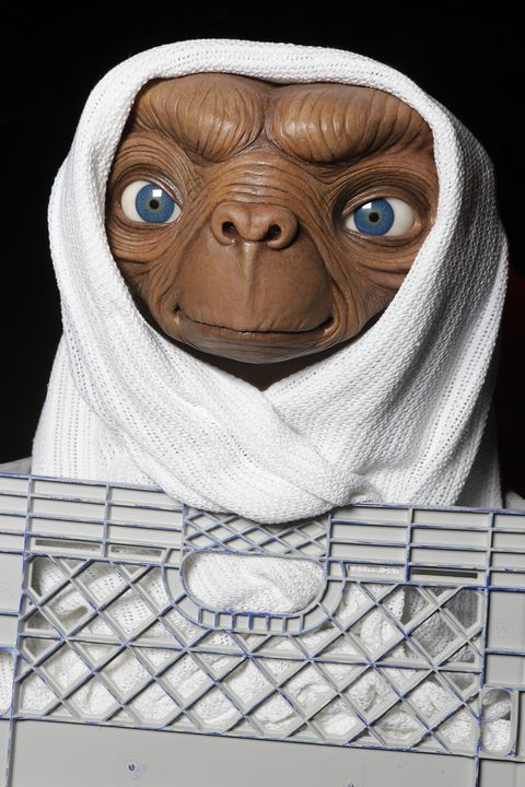 Fictional character, Primate, Terrestrial animal, Wrinkle, Snout, Illustration, Mesh, Net, Painting,