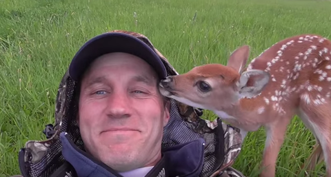 Baby Deer Refuses To Leave Man's Side—And Now The Two Are The Best Of Friends