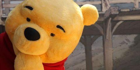 Yellow, Toy, Plush, Orange, Stuffed toy, Baby toys, Teddy bear, Bear,