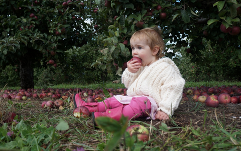 People in nature, Garden, Baby & toddler clothing, Shrub, Groundcover, Produce, Whole food, Natural foods, Baby, Fruit,