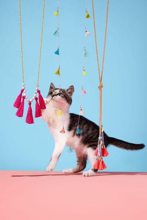 "<p><em>From left: BaubleBar Majorca Lariat Necklace, $48, <a href=""https://www.baublebar.com/product/26755-majorca-lariat.html"" target=""_blank"">baublebar.com</a>; The Limited Long Fabric Tassel Necklace, $24, <a href=""http://www.thelimited.com/product/long-fabric-tassel-necklace/1485021.html?cgid=necklaces&prefn1=saleStatus&dwvar_1485021_colorCode=825&start=37&prefv1=regular&ppid=c37"" target=""_blank"">thelimited.com</a>; MeMe London Bora Bora Necklace</em><em>, $100, <a href=""http://www.meme.london/necklaces/bora-bora"" target=""_blank"">meme.london</a></em></p>"