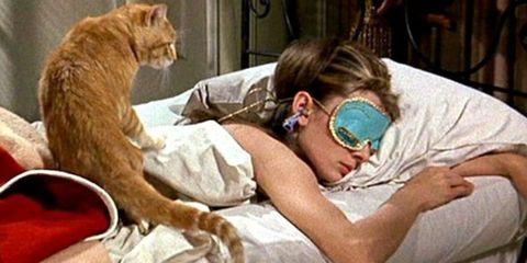 Human, Cat, Felidae, Comfort, Birth, Small to medium-sized cats,