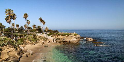Body of water, Coastal and oceanic landforms, Vegetation, Coast, Shore, Landscape, Sea, Ocean, Bay, Arecales,