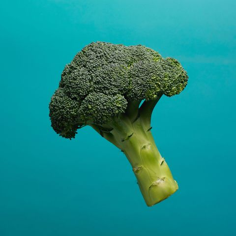 Broccoli, Cruciferous vegetables, Leaf vegetable, Organism, Vegetable, Underwater, Stony coral, Plant, Coral,