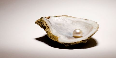 Bivalve, Natural material, Beige, Oyster, Shell, Shellfish, Molluscs, Seafood, Invertebrate, Artifact,