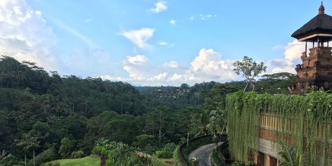 Vegetation, Nature, Cloud, Natural landscape, Shrub, Nature reserve, Land lot, Garden, Rural area, Hill station,