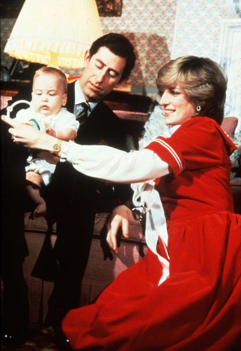 <p>Princess Diana wore a festive red velvet dress in this portrait with Prince Charles, and the infant Prince William. </p>