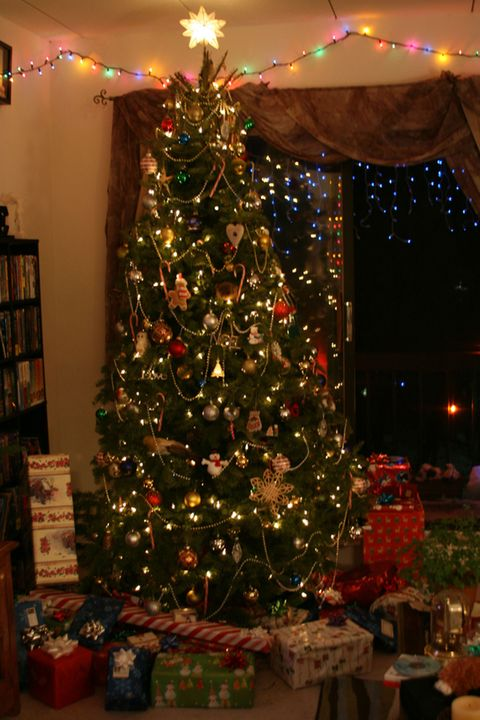 """<p>One family <a href=""""http://journalstar.com/lifestyles/home-and-garden/your-tales-of-christmas-tree-disasters/article_5a706d72-da04-11de-88c9-001cc4c002e0.html"""" target=""""_blank"""" data-tracking-id=""""recirc-text-link"""">realized they had cut the tree crooked</a> when they got home, and heard the tree fall ... <em data-redactor-tag=""""em"""" data-verified=""""redactor"""">twice</em>. They were determined to get it to stay, so they tied a piece of dental floss around the trunk and lassoed the tree to keep it up. It was """"virtually invisible"""" and lasted the whole holiday season.</p>  <p>(<a href=""""https://www.flickr.com/photos/valerie_gaffney/3229603069/in/photolist-5RDVrK-4zZA2S-8UcnJX-2pkJd3-4dRKY1-5LtzQm-4gYede-4gW4Xg-4eh8AM-wgVh7-aWA9pv-5GisxM-b2m22X-7pBRSi-5JKdXM-8XMdd3-4eh9NK-L4o3K-8Ym1XB-dwVG2o-7mgBsM-aRhh94-5Voytx-7oThnG-aWmjWD-jzngwo-j2KLC4-eYMinb-wgWrY-5Ju5Go-8WELd1-wgX19-5GTxZ5-wgVT5"""" target=""""_blank"""" data-tracking-id=""""recirc-text-link"""">Valerie Gaffney via flickr</a>)</p>"""