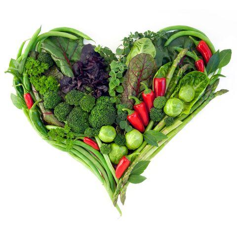 diet ile ilgili görsel sonucu