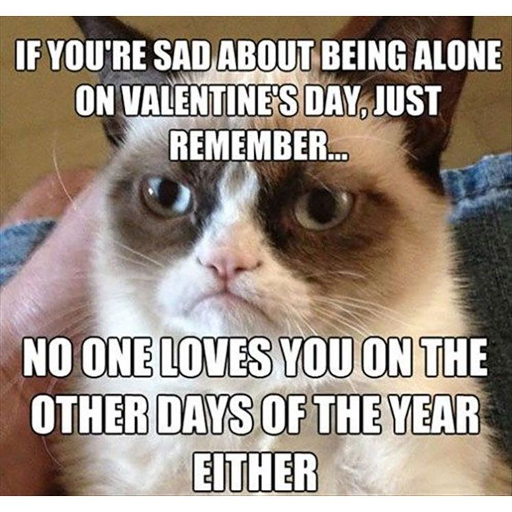 20 funny valentines day quotes hilarious love quotes for women funny valentines images