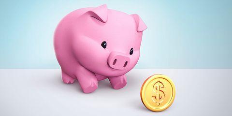 Toy, Pink, Saving, Magenta, Animal figure, Snout, Suidae, Baby toys, Domestic pig, Livestock,