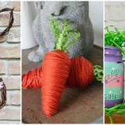 Carrot, Leaf, Twine, Flowerpot, Plant, Vascular plant, Flower, Twig,
