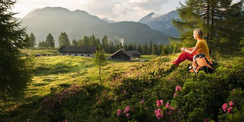 Natural landscape, People in nature, Nature, Wilderness, Mountainous landforms, Natural environment, Mountain, Meadow, Mountain range, Wildflower,