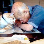 cat-turns-grandpas-life-around