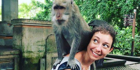 Organism, Vertebrate, Primate, Facial expression, Jaw, Adaptation, Macaque, Tooth, Terrestrial animal, Iris,