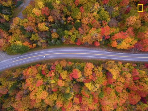 "<p>""<a href=""http://www.elledecor.com/life-culture/entertaining/g8663373/best-drone-photography/"" target=""_blank"">Aerial view</a> of the scenic drive and the beautiful fall colors of New Hampshire. I used a drone to capture the fall colors that cannot be seen from the road."" –photographer         <a href=""http://yourshot.nationalgeographic.com/profile/71440/"" target=""_blank"" data-tracking-id=""recirc-text-link"">Manish Mamtani</a><a href=""http://yourshot.nationalgeographic.com/profile/71440/""></a></p>"