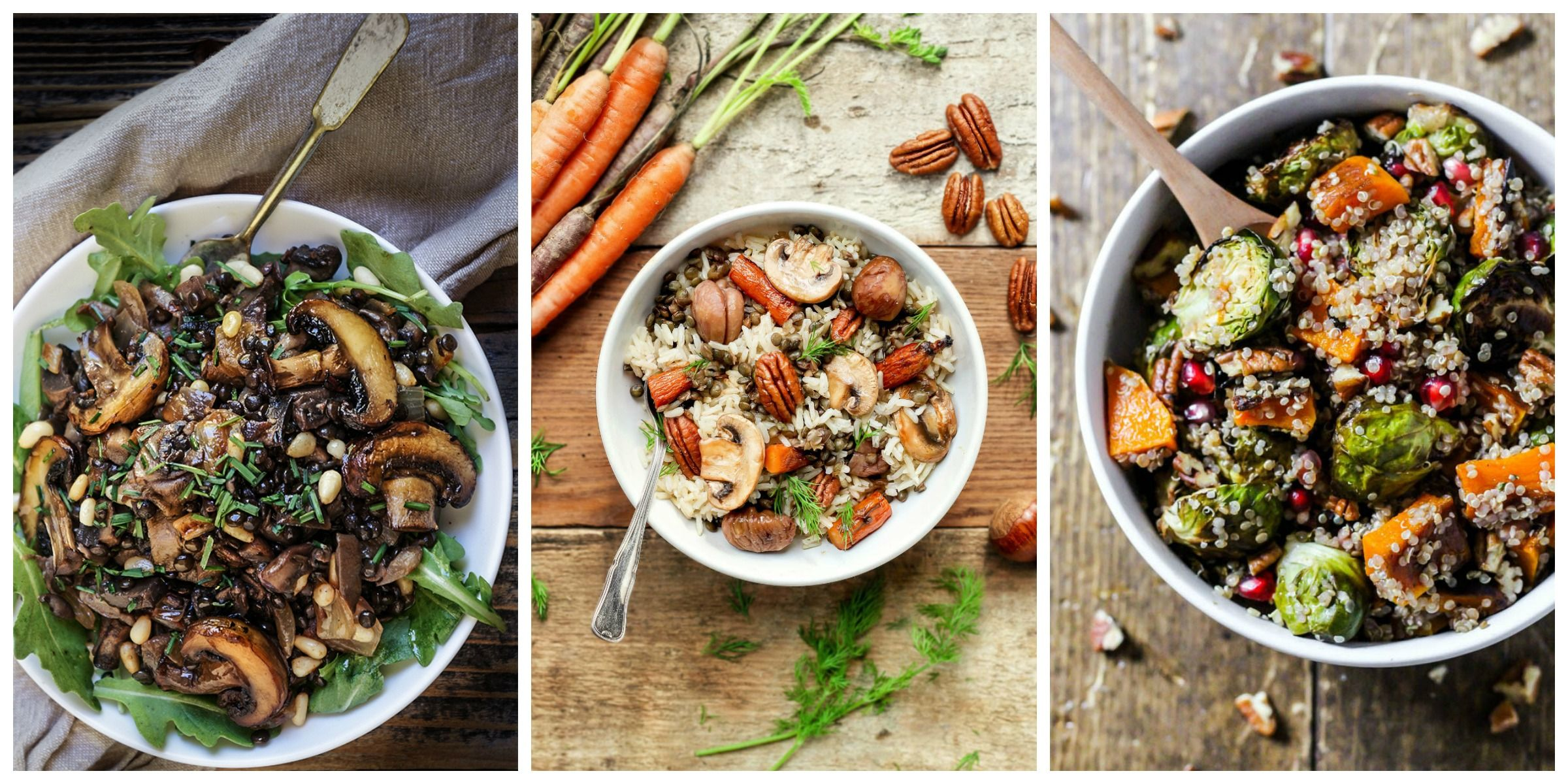 17 Colorful, Comforting Fall Salads to Make ThisSeason forecast