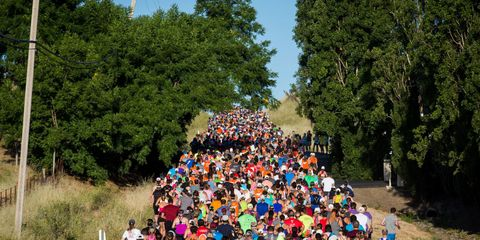 Crowd, People, Social group, Community, Leisure, Recreation, Youth, Event, Marathon, Tree,