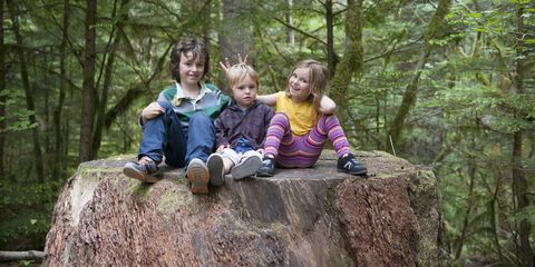 People, Photograph, Tree, Natural landscape, Wilderness, Nature reserve, Old-growth forest, Child, Rock, Fun,