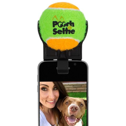 Gifts Under 20 Pooch Selfie Stick