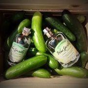 Blue Spirits pickle vodka