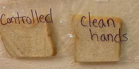 Text, Font, Gluten, Bread, Food, Cuisine,