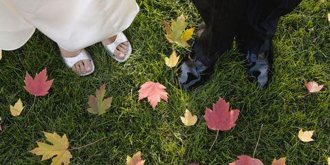 fall weddings lead