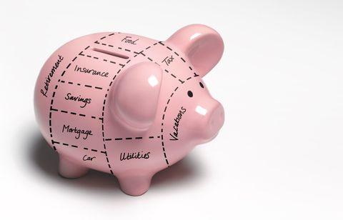 Piggy bank, Saving, Pink, Money handling, Domestic pig,