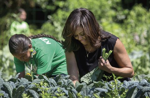 """<p>Michelle Obama harvests kale with students in the White House Kitchen Garden. """"This garden has taught us that if we have the courage to plant a seed, then take care of it, water it... weather the storms that inevitably come, if we have the courage to do that, we never know what might grow,"""" Obama is quoted as saying in <em data-redactor-tag=""""em"""">Chasing Light.</em></p>"""
